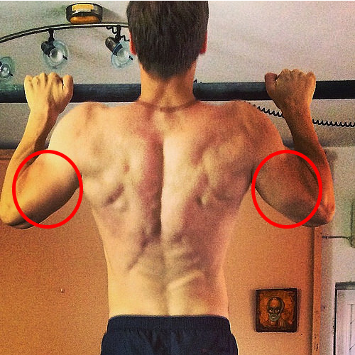 Las dominadas y los triceps
