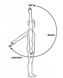 extension de hombro