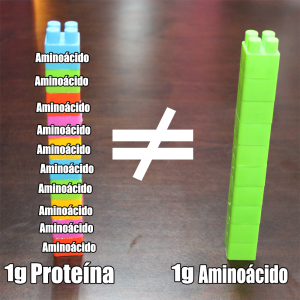 Aminoácidos y Proteína de lego