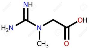 estructura de la creatina