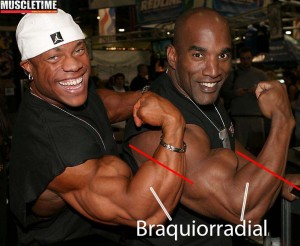phil heath antebrazos