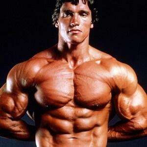 Arnold 4 abdominales