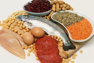 buenas fuentes de proteína leucina