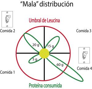 umbral de leucina mala distribucion