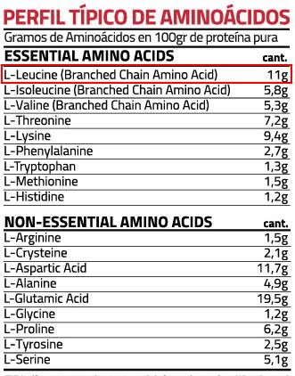 Porcentaje de Leucina. Perfil de aminoácidos en base a 100g.