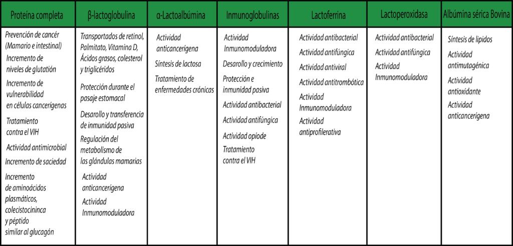Propiedades bioactivas de la proteína de whey