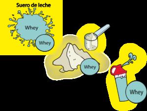 whey polvo suero de leche