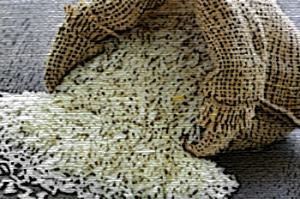 proteinas para veganos de arroz