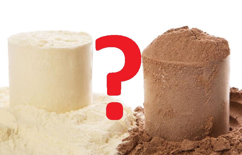 en cuanto tiempo se absorbe la proteína de whey