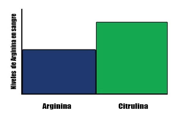 Citrulina o Arginina