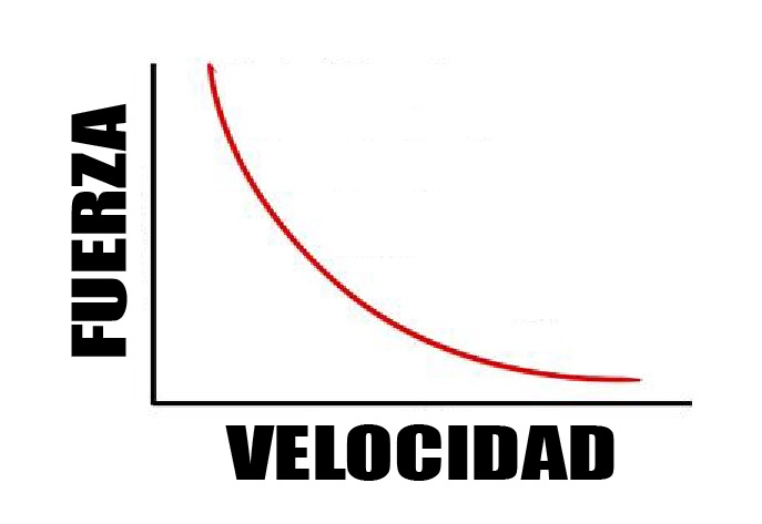 Relación fuerza velocidad