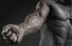Citrulina malato: Efectos sobre el entrenamiento – Dosis y Pre-entrenos (Guía)