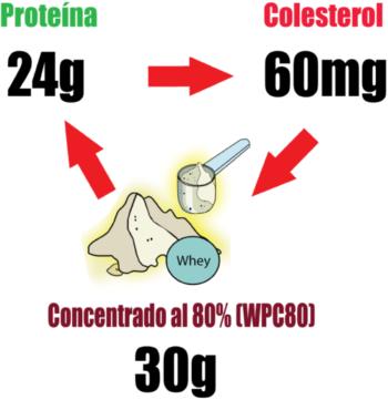Relación Proteína concentrada de suero colesterol