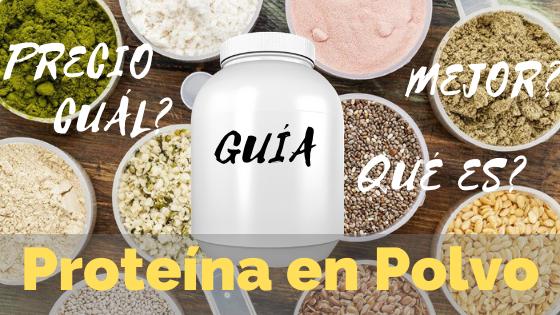 proteína en polvo guia