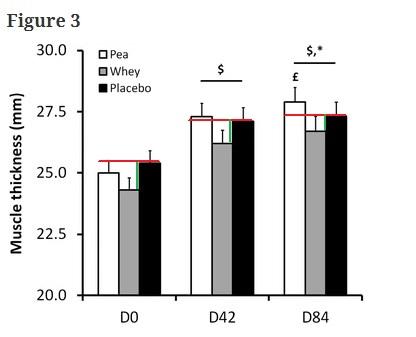 proteina de guisante vs proteina de suero whey