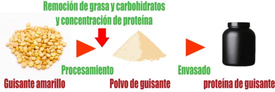 que es proteina de guisante