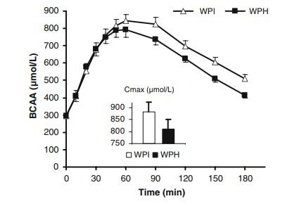 whey protein hidrolizada vs whey normal