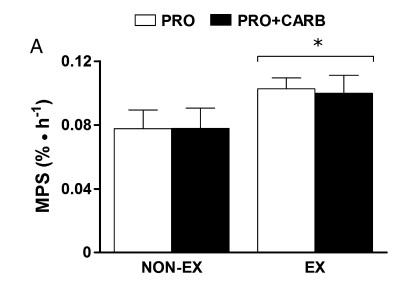 combinar proteina con carbohidratos