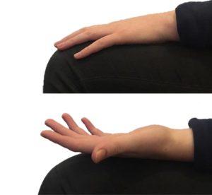 girar las manos antebrazo
