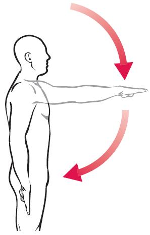 Extension de brazo