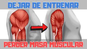DEJAR DE ENTRENAR Y PERDER MASA MUSCULAR