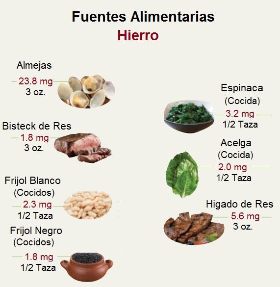 Alimentos Fuentes de Hierro