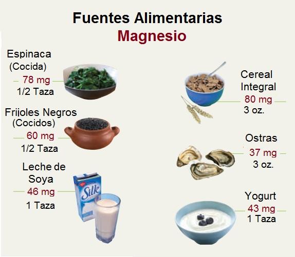 Alimentos Fuentes de Magnesio