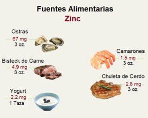 Alimentos Fuentes de Zinc