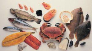 alimentos con mayor contenido de omega 3