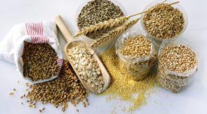 cereales alimentos con proteina vegetal