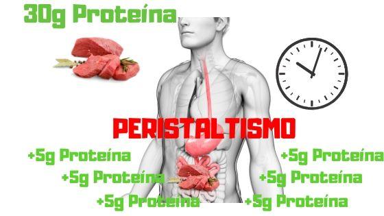 cuanta proteina se absorbe por comida