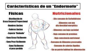 endomorfo caracteristicas