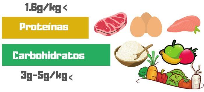 recuperacion muscular alimentacion