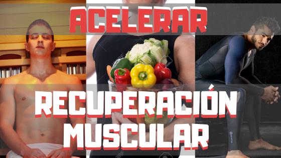 recuperacion muscular