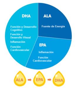 tipos de omega 3 diferencias