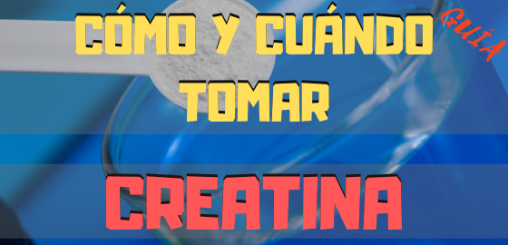COMO Y CUANDO TOMAR CREATINA