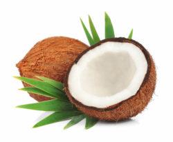 coco tiene muchas calorias