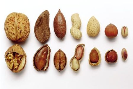 fruto secos con cascara