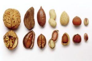frutos secos grasas saludables