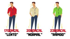 metabolismo diferencias