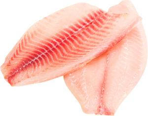 tilapia proteina
