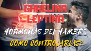 ghrelina y leptina