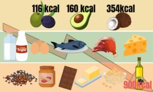 densidad energetica de las grasas