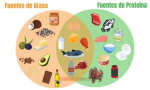 densidad energetica de las grasas y proteinas