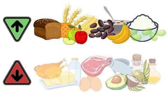 dieta muy baja en grasa