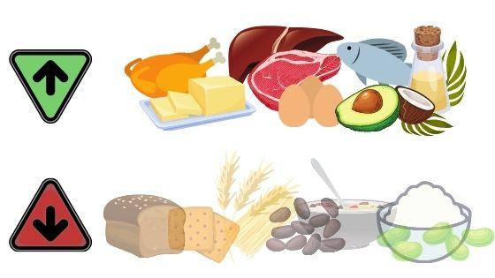 dieta low carb que comer